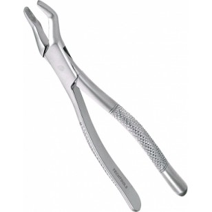 Extracting Forceps Adults